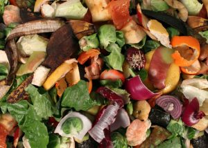 food for composting